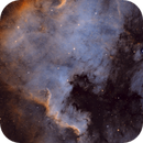 North American Nebula (NGC7000),                                Jeff Ridder
