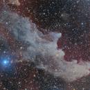 Witch Head Nebula - Work in progress,                                Sebastiano Recupero