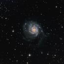 M101 OnStep EQ6,                                Instein
