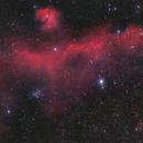 IC 2177 Möwen Nebel,                                Hakan Midik