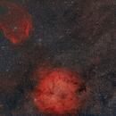 IC 1396 mit Sh2-129,                                Mario Richter