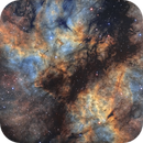 Butterfly Nebula in Cygnus,                                Nik Szymanek