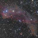 Gecko Nebula (LBN 437),                                Martin Palenik