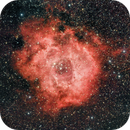Rosette Nebula (RGB + Optolong l-eNhance),                                Paolo Demaria