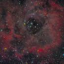 The Rosette Nebula under a half moon,                                Topographic