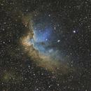 Wizard Nebula,                                Chad Quandt
