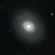 M94 - Cat's Eye Galaxy,                                Jon Stewart
