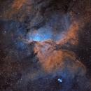 NGC 6193,                                Dane Wachs