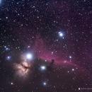 Horsehead and flame nebula ,                                alpheratzlaboratory