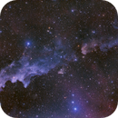 Witch Head Nebula!(New Process),                                Mohammad Nouroozi