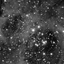 NGC 2237 - ED80 - Atik320e - Première Image CCD  ,                                Laurent