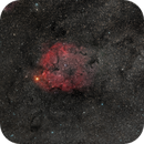 IC 1396 Widefield,                                Fritz