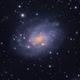 NGC 300 LRGB,                                Andy 01