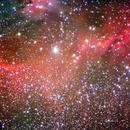 Seagull Nebula - IC2177,                                Tony Kim
