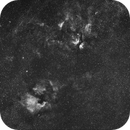 Cygnus Region Ha 12 nm,                                Gideon Golan