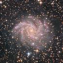 The Fireworks Galaxy,                                Gabe Shaughnessy