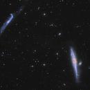 NGC 4631 und co,                                Mario Richter
