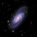 NGC 2903,                                Dustin and Georgi...