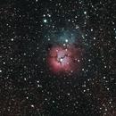 M20 - Trifid Nebula,                                Screwdriverone