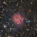 The Cocoon Nebula (IC 5146),                                Marcel Nowaczyk