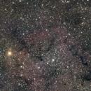 IC 1396 Elephant Trunk Nebula #4,                                Molly Wakeling