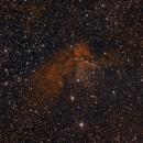 NGC7380 The Wizard Nebula,                                Greg Ray