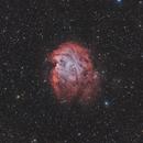 NGC2174 Monkey Head nebula in HOO stars in RGB,                                Jean-François Dou...