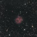 Cocoon Nebula (HaLRGB),                                Landon Boehm