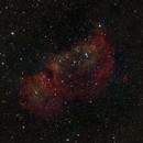 A Stellar Blast Furnace: Westerhout 5 (IC 1848, The Soul Nebula),                                Daniel Erickson