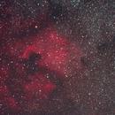 North American Nebula,                                griz11