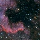 Cygnus Wall,                                Björn Hoffmann