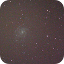 M101 ,                                Tim Scott