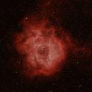 Rosette Nebula,                                DeepSkyAdventure