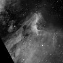 Pelican Nebula H-Alpha,                                Bill Keller