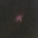 M16 Eagle Nebula,                                petelaa