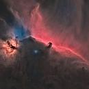 Starless HorseHead Nebula,                                Tom Peter AKA Ast...