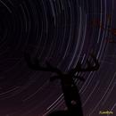 Filés d'étoiles sur la constellation du cerf vidé :-),                                JLem@ire