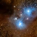 NGC 6729 Caldwell 68,                                Glenn C Newell