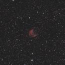 Sh2 274 Medusa Nebula,                                Stephen Migol