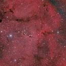 IC 1396 trompa del elefante,                                Raúl López