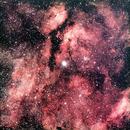 Sadr and NGC 6910,                                Manel Marin Guzman