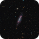 NGC4236 - A Spiral Galaxy in Draco,                                Daniel.P