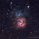 M20 - Trifid Nebula,                                Dario Iraci