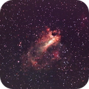 Swan nebula,                                superstar