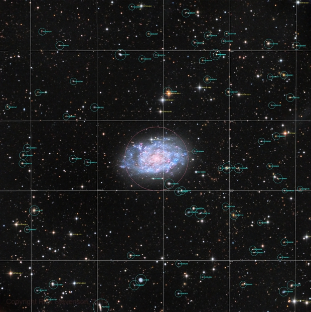 NGC 7793 - annotated field,                                Rick Stevenson