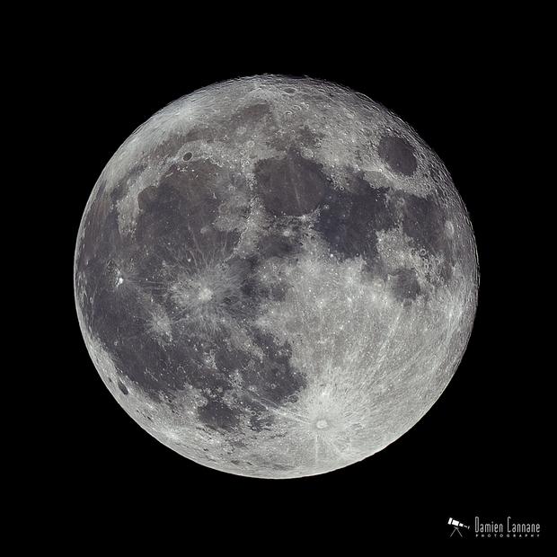 Birthday Moon,                                Damien Cannane