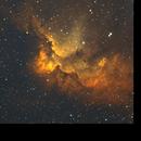 The Wizard nebula. NGC 7380,                                John Robbins