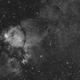 IC1795 bicolor,                                antares47110815