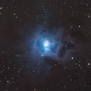 Iris Nebula NGC7023,                                Albert van Duin