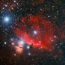 IC434 HorseHead, Askar ACL200,                                tjm8874